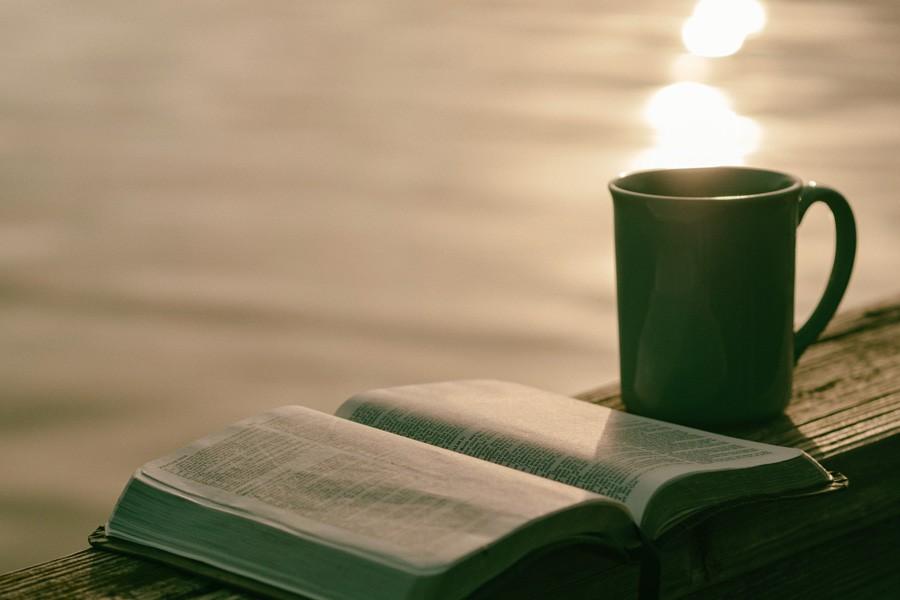 Live a calmer more peaceful life